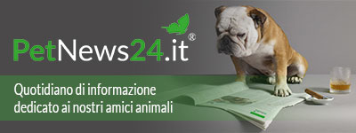 PetNews24.it